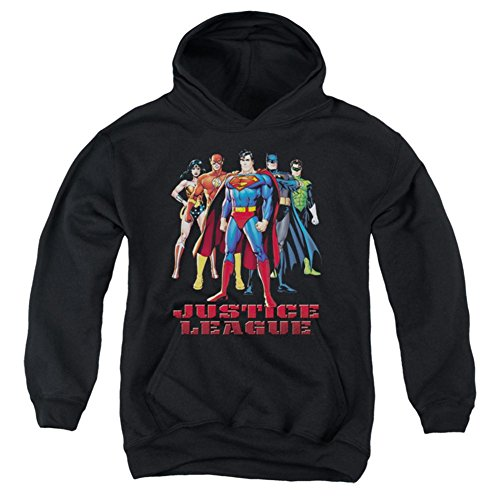 Youth Hoodie Justice League In League Pullover Hoodie Size Y