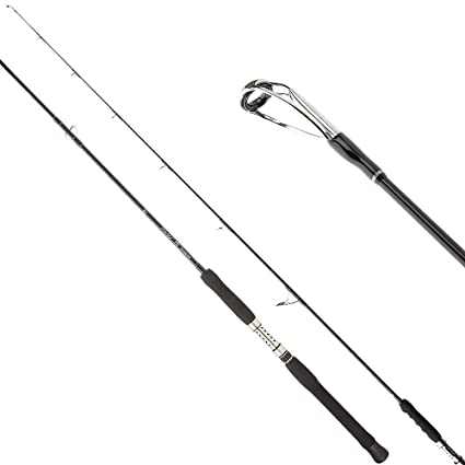 Amazon com : SHIMANO Terez Saltwater Spinning Rod
