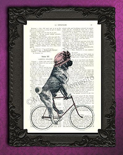 - Pug on bicycle decorations, decorative upcycled antique dog decor, cycling animal illustration bike wall art print