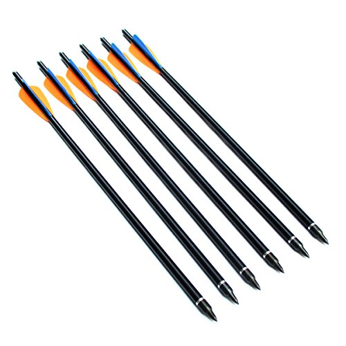 Fiberglass Arrows Letszhu Archery Hunting Crossbow Bolts with Field Points 4inch TPU Vanes for Recurve Compound Bow(Pack of 6) (18inch 6Pack)