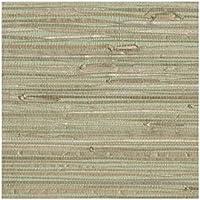 York Wallcoverings NZ0780 Sea Grass Grasscloth Wallpaper, Pale Green, Cream, Beige, Tan, Brown