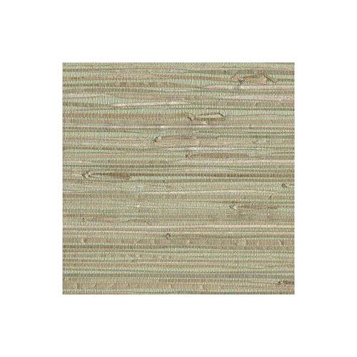 York Wallcoverings NZ0780 Grasscloth by Sea Grass Wallpaper, Pale Green, Cream, Beige, Tan, Brown