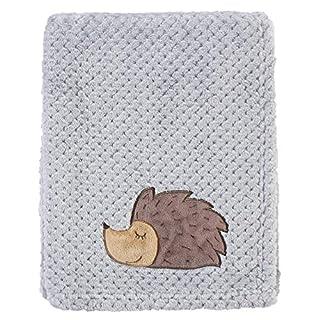 Hudson Baby Unisex Baby Plush Waffle Blanket, Hedgehog, One Size