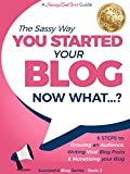 You Started a Blog - Now What....?: 6 Steps to Growing an Audience, Writing Viral Blog Posts & Monetizing your Blog (Beginner Internet Marketing Series Book 2)
