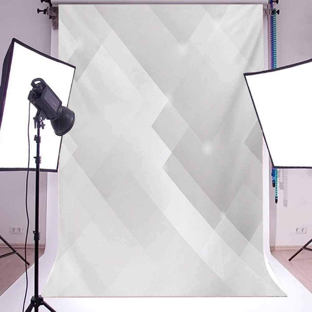 Grey 10x12 FT Photo Backdrops,Abstract Soft Tones Featured Perspective Stripes Reflection Rays Artisan Artwork Print Background for Baby Birthday Party Wedding Vinyl Studio Props Photography Cloud