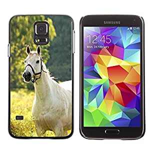 Paccase / SLIM PC / Aliminium Casa Carcasa Funda Case Cover para - White Horse On Field - Samsung Galaxy S5 SM-G900