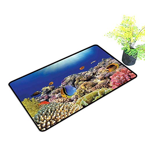 Diycon Entrance Door mat Ocean Wild Sea Life Colorful Ancient Coral Reefs Exotic Fishes Bali Indonesia W24 xL35 Indoor Outdoor, Waterproof, Easy Clean Tan Blue and Orange