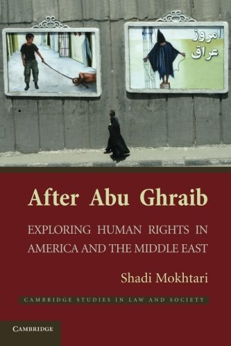 After Abu Ghraib (Cambridge Studies in Law and Society)