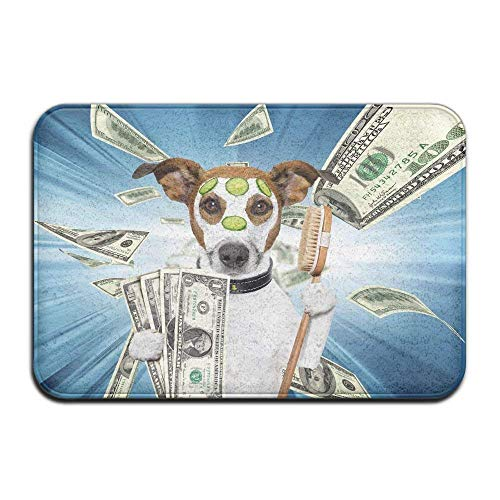 JOQSI doormats Door Mat Cover Rug Dog Dollar Spa Absorbent for sale  Delivered anywhere in Canada