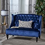Christopher Knight Home 301395 Leora Loveseat Sofa, Navy Blue + Dark Brown