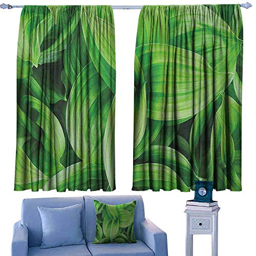 Mannwarehouse Plant Windshield Curtain Close-up Beautiful Tropic Foliage Pattern Helleborus Leaves Natural Herbs Wildflowers Privacy Protection 55