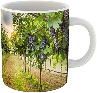 Emvency Coffee Tea Mug Gift 11 Ounces Funny Ceramic Green Napa Grape Harvest Purple Valley Vineyard Gifts For Family Friends Coworkers Boss Mug