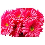 CraftMore-14-Inch-Pink-Gerbera-Daisy-Stems-Set-of-12