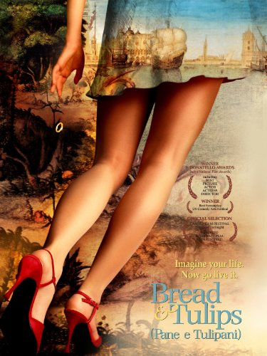 Bread & Tulips (English Subtitled)