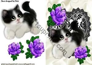 Lindo gatito con rosas púrpuras en color negro/blanco de encaje de corazón por Nick Bowley