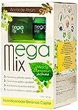 Megamix Botanical Argan Oil Intense Hair Treatment