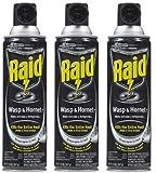 Raid Wasp & Hornet Killer 33 Spray, 17.5 Ounce (3 Pack)