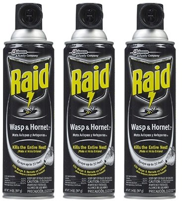 Raid Wasp & Hornet Killer 33 Spray, 14-Ounce (3 Pack) (Nest Wasp Spray)