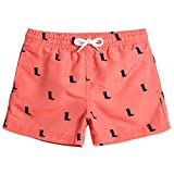 MaaMgic Kids Toddler Little Boys Dinosaurs Swim Trunks Quick Dry with Mesh Lining