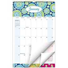 "2019 Wall Calendar - 11""x17"" - Colorful, Vibrant, Fun and Fashionable Monthly Calendar"