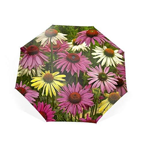 Travel Umbrella Windproof Earth Daisy Flowers White Yellow Pink Echinacea Umbrella Automatic Open Close Folding Portable