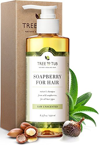 Gentle, Sensitive Scalp Shampoo. The Only pH 5.5 Balanced Hypoallergenic, Fragrance Free Shampoo for Psoriasis Scalp – Organic Moroccan Oil Shampoo with Wild Soapberries, 8.5 oz—by Tree To Tub
