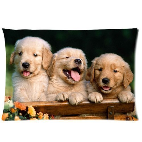 Craig aitken TSlook Throw Blankets Golden Retriever Fleece Blanket for Couch/Sofa/Bed 60x80 price tips cheap