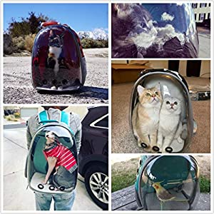 iLOVE Pet Carrier Backpack for Cat and Small Dog, Portable Transparent Pet Backpack, Waterproof Clear Space Capsule Bubble Cat Carrier for Travelling