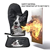 Oven Mitts and Pot Holders Sets,Young Border Collie