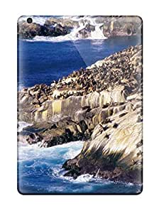 Excellent Ipad Air Case Tpu Cover Back Skin Protector Coastal Sea Lions Picture