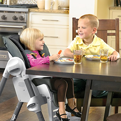 Best Baby Highchair – The Chicco Polly