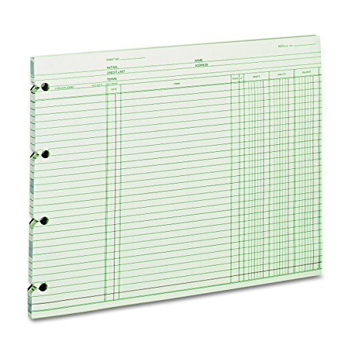Wilson Jones GN2D Accounting, 9-1/4 x 11-7/8 (Pack of 100 Loose Sheets) ()