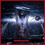 img - for Transhuman Dissident book / textbook / text book