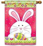 Hippity Hop Easter House Flag