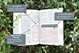 NIV, Ultimate Bible for Girls, Faithgirlz