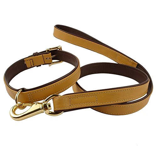 PET ARTIST -Soft Plain Leather Dog Collar & Leash Set- Soft Inner Padded Dog Collar M Size- Matching Dog Leash 40