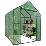 BBBuy 4-Tier Mini Greenhouse 8 Shelves Garden Plant Flower House Grow Tent Indoor Outdoor Green House