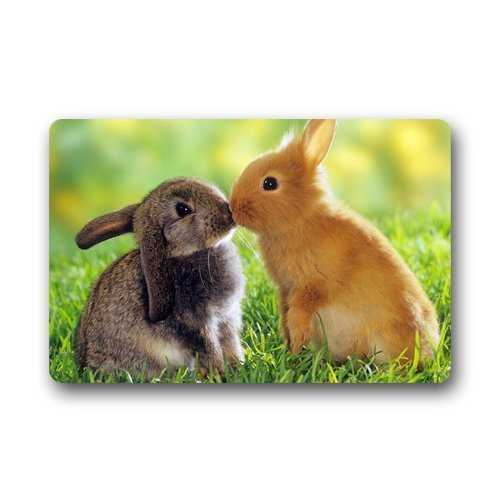 Roman's Doormat Personalize Decor Carpets ? Door Mats Cute Rabbits Animals Kissing machine washable s indoor outdoor house Doormats Area Rugs Entryway Mats 23.6in by 15.7 (Rabbit Rug)