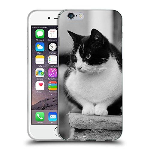 """Just Phone Cases Coque de Protection TPU Silicone Case pour // V00004183 Chat noir et blanc sur les escaliers // Apple iPhone 6 4.7"""""""