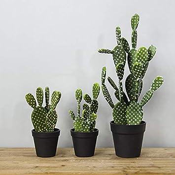 Fansi 1 Pcs Simulation Plante Verte Ventilateur Rond Cactus Soie Fleurs Artificielles pour la F/ête De Mariage Jardin Balcon Plantes Artificielles pour Bureau Salon Filles Chambre