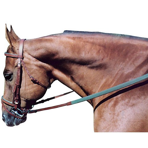Tory Leather Padded Flat Bridle Horse (Flat Buckle End Rein)