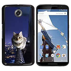 Paccase / SLIM PC / Aliminium Casa Carcasa Funda Case Cover para - Cat Balcony Feline Sky City View Panorama - Motorola NEXUS 6 / X / Moto X Pro