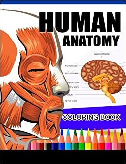 Human Anatomy Coloring Book: Anatomy & Physiology Coloring Book ...