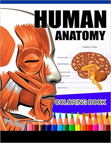Human Anatomy Coloring Book Physiology Complete Workbook DrJames K Hudak 9781537715735 Amazon Books