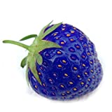 Loveble 500Pcs Blue Strawberry Rare Fruit Seeds Bonsai Edible Climbing Plant