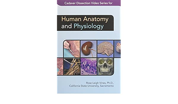 Cadaver Dissection Video Series For Human Anatomy And Physiology