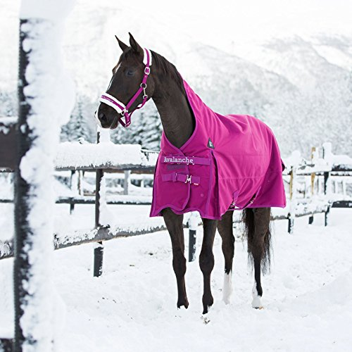 Horze Avalanche 1200D Medium Weight Turnout Blanket With High Neck 150g Boysenberry Purple 75