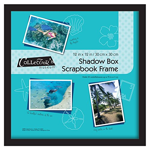(MCS 12.75x12.75 Inch Shadow Box Frame Holds 12x12 Inch Scrapbook Page, Black)