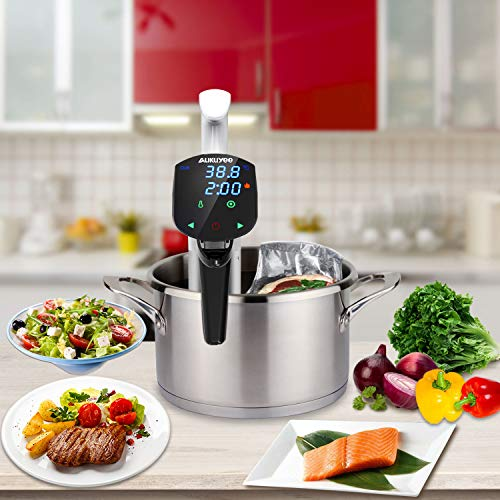 Professional sous vide machine