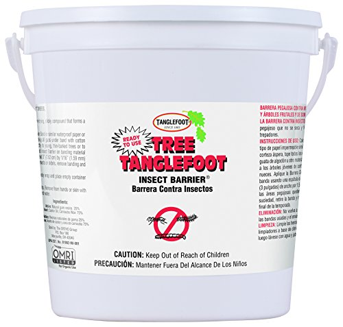 Tanglefoot Tree Insect Barrier Pail 4.5 LB